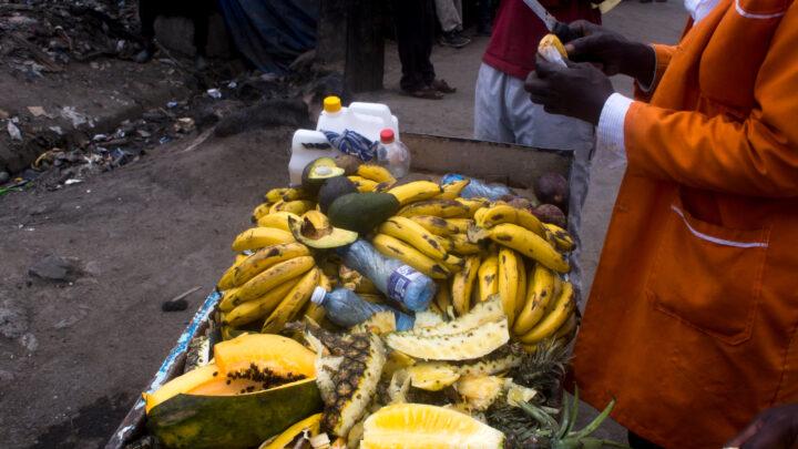 FSL Nairobi fruits