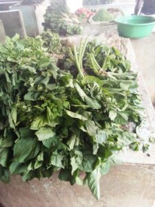 African Leafy Vegetables in Kisumu's informal market