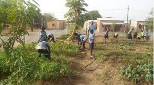 FSL Cotonou: School childrens